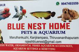 BLUE-NEST-HOME-PETS-AND-AQUARIUM